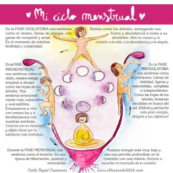 ciclo_menstrual_bien2